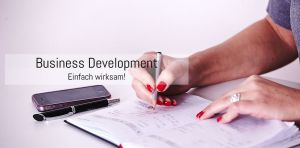 BusinessDevelopment2